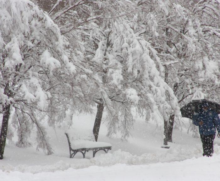 Student Walking Campus Winter Snow